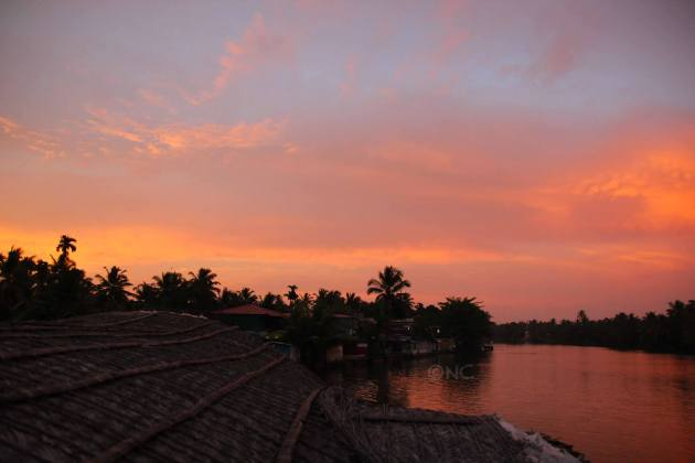 The backwaters at Alleppey